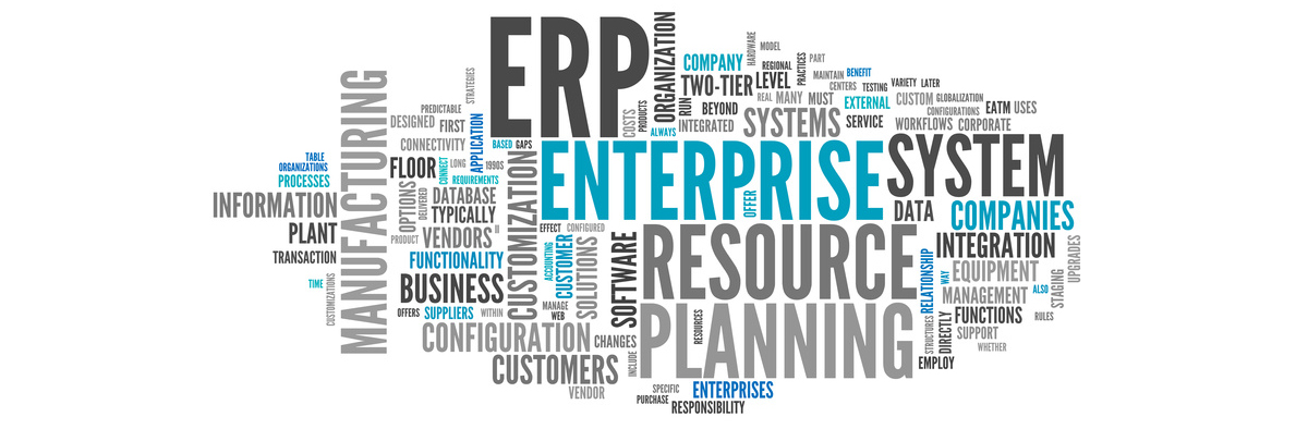 ERP-Consulting